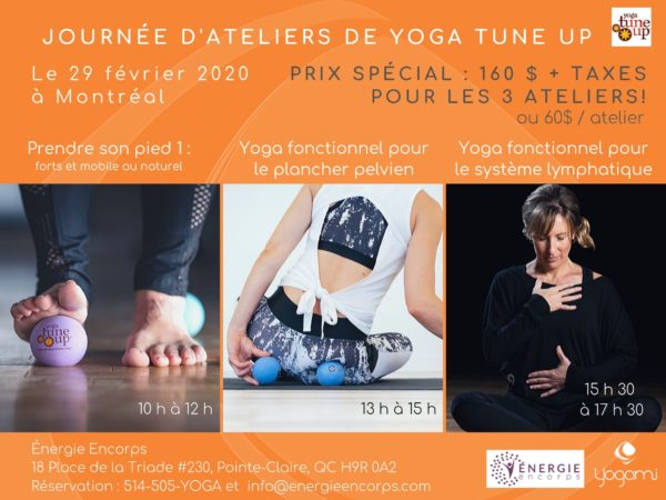 The Roll Model, Yoga fonctionnel pour le plancher pelvien, pelvic floor health, système lymphatique, prendre son pied, yogami, coregeous , yoga pour la gestion du stress, mimi martel , energie encore, yoga montréal, prendre son pied, full body Tune Up , yoga tune up montréal, yoga fonctionnel , yoga-balles, yoga-balls