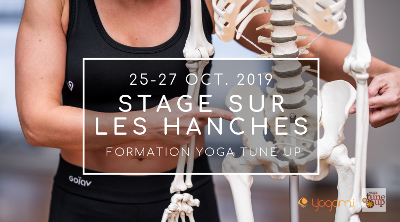 Stage Yoga Tune Up Hanches, yoga-balles, yoga tune up , the roll model, mireille mimi martel, jill miller